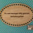 Ha nem mozogsz elég gyorsan, körbehorgollak! - feliratos horgolható fa tábla - Wood Stitch Collection