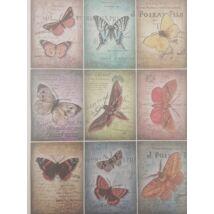 Rizspapír - Pillangók