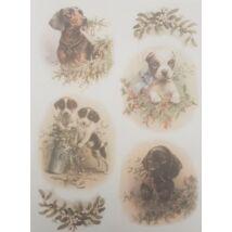Rizspapír - Kutyakölykök