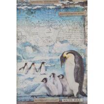 Rizspapír - Déli sark pingvinekkel
